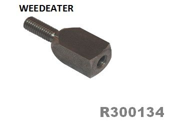 R300134